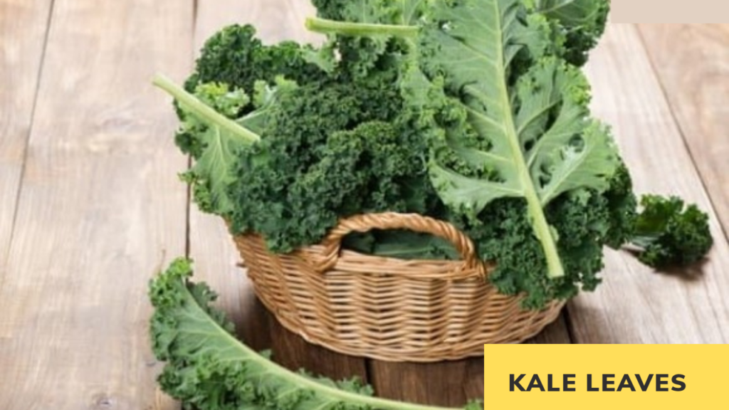 kale leaves smoothie stabilize blood sugar for diabetes