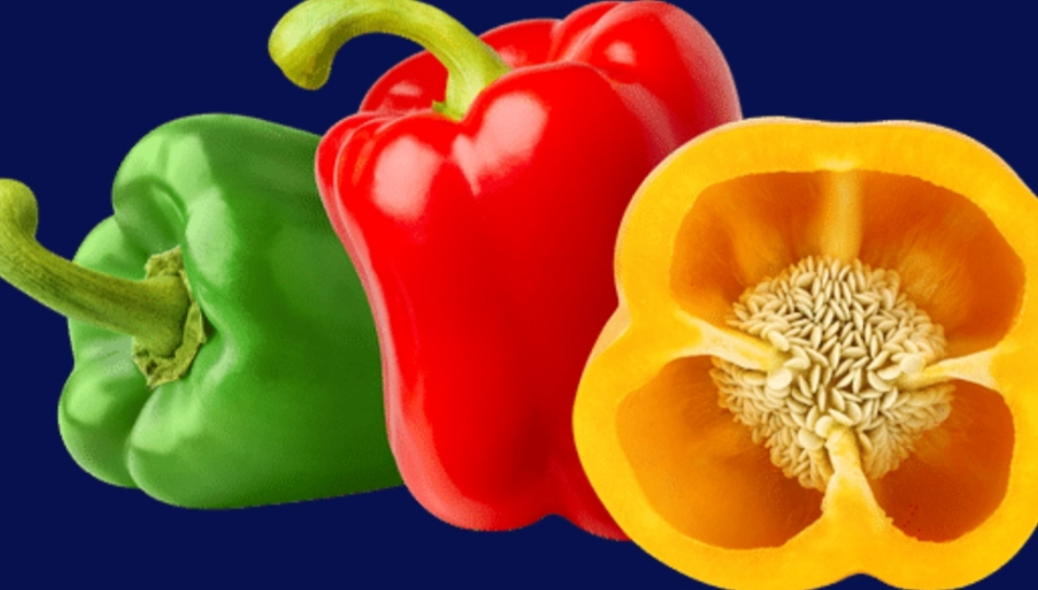 bell peppers low carb