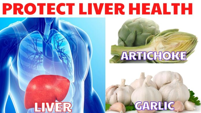 protect liver